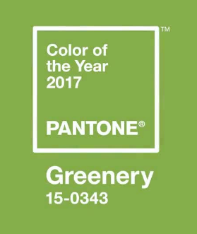 * Pantone's Colour of the Year 2017