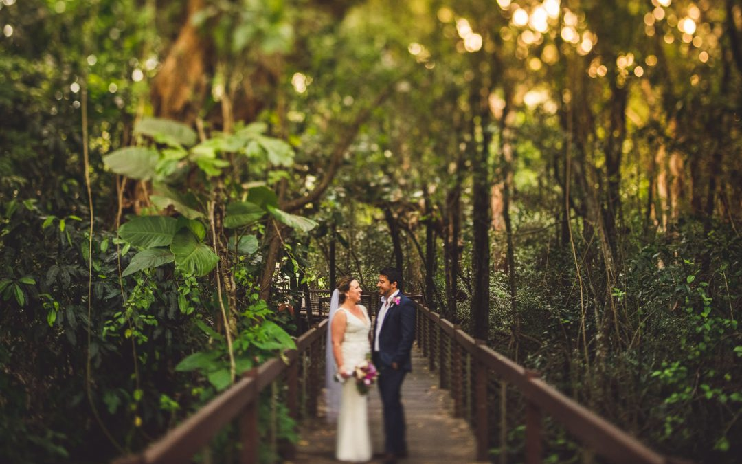 * Stephen & Kelly's Palm Cove Wedding